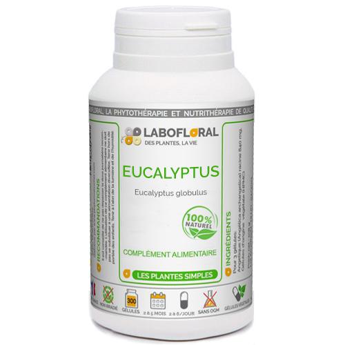 Eucalyptus Phytaflor