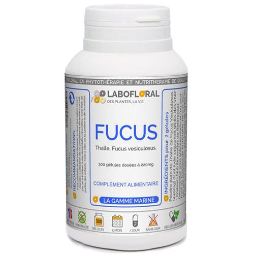 Fucus Phytaflor