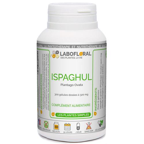Ispaghul ou Psyllium Phytaflor