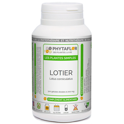 Lotier Phytaflor