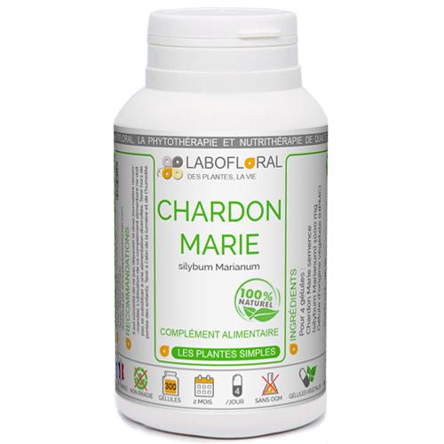 Chardon Marie Phytaflor
