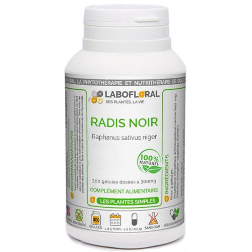 Radis Noir Phytaflor