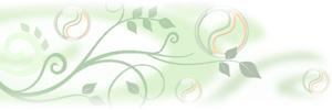 Gélules gélatine à la chlorophylle naturelle
