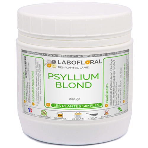 Psyllium blond vrac
