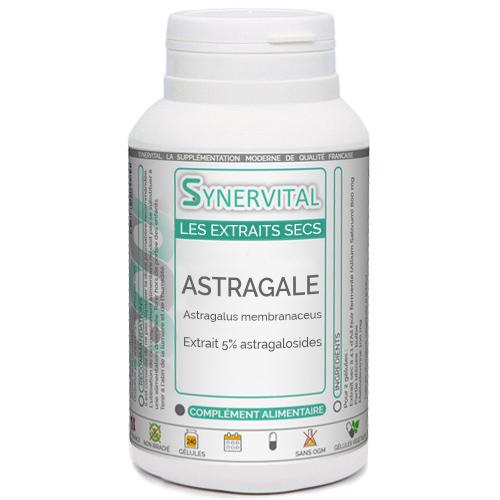 Astragale Extrait à 5% Synervital.