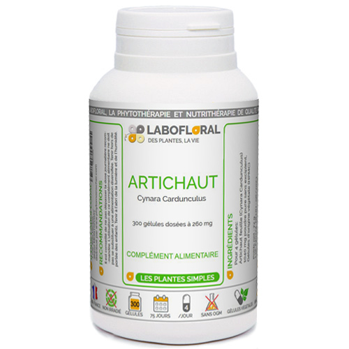 Artichaut Phytaflor