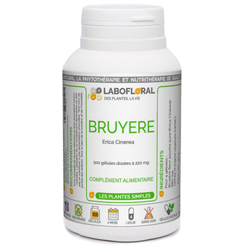 Bruyère Phytaflor