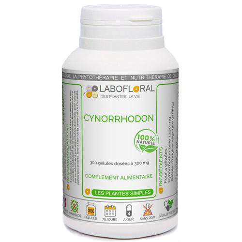 Cynorrhodon Phytaflor