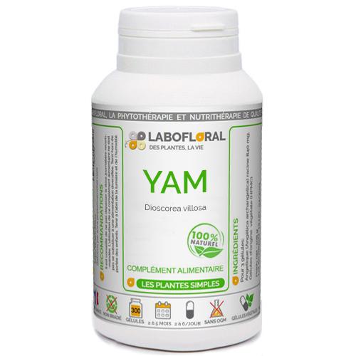 Yam Mexicain Phytaflor