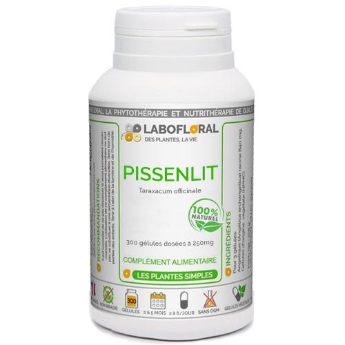 Pissenlit Phytaflor