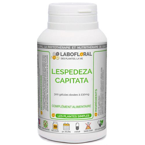 Lespedeza Capitata Phytaflor
