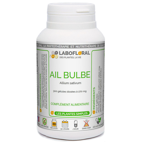 Ail bulbe LaboFloral