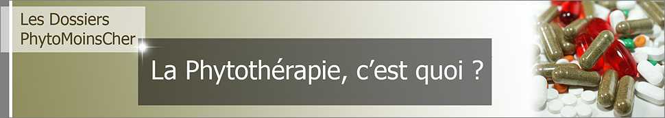 Phytothérapie, compléments alimentaires et médicaments.